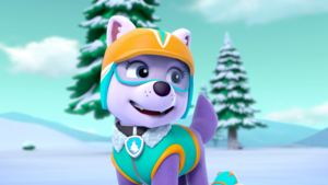Everest - PAW Patrol