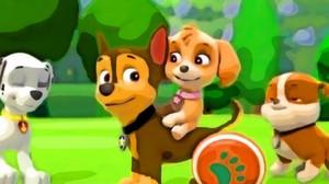 Fanarts - Skye and Chase
