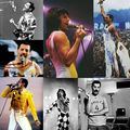 Freddie Mercury - freddie-mercury fan art