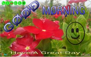Good Morning Have a nice hari