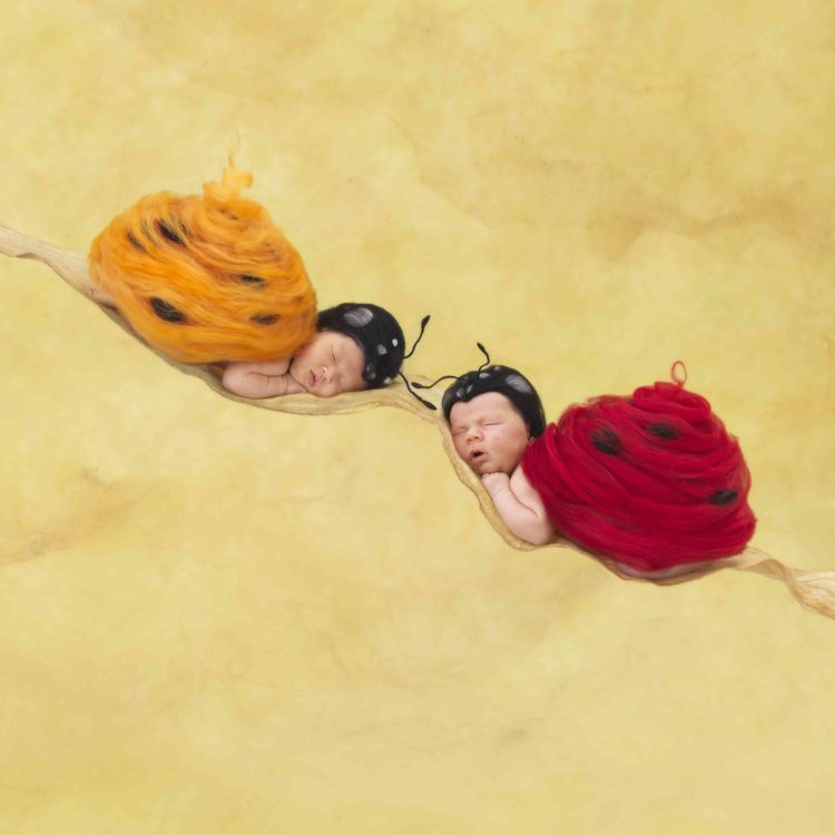 Heartfelt by Anne Geddes