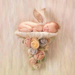 Heartfelt door Anne Geddes
