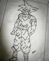 IMG 20170105 225123 101 - dragon-ball-z photo