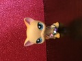 IMG 2486.JPG - littlest-pet-shop photo