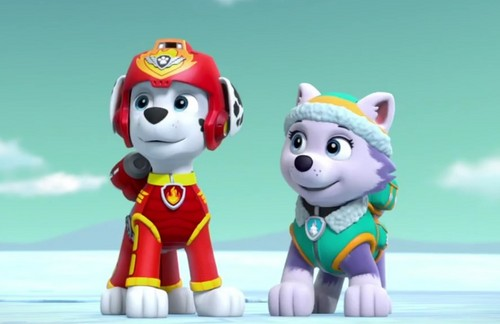 PAW Patrol Wallpaper Called Marshall And Everest