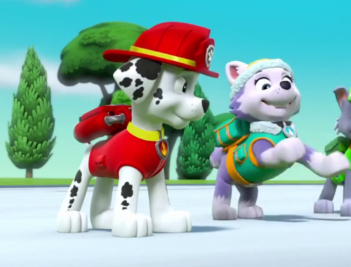 Paw patrol images marshall and everest paw patrol wallpaper and