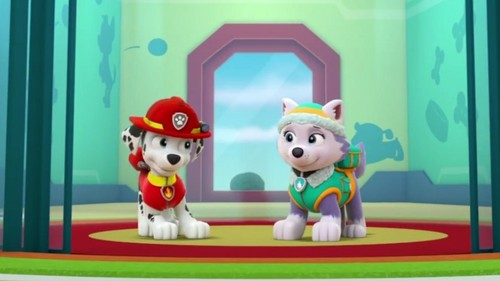 PAW Patrol karatasi la kupamba ukuta called Marshall and Everest - PAW Patrol