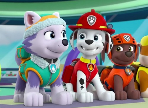 Patrulha Canina Wallpaper Entitled Marshall And Everest   PAW Patrol