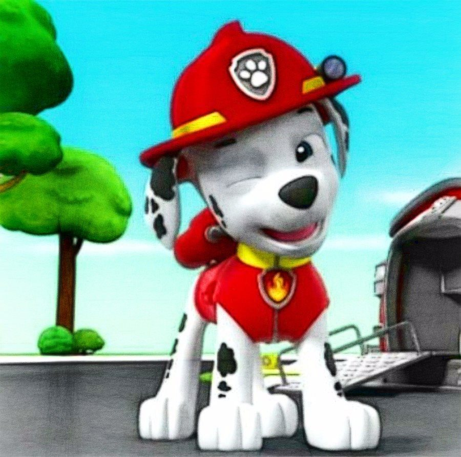 Marshall - PAW Patrol Fan Art (40146352) - Fanpop