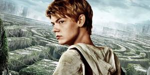 Maze runner Newt