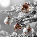Merry Christmas ! - christmas photo