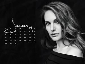 NP.COM Calendar - January 2017
