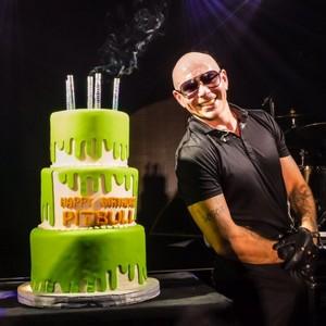 Pitbull with his birthday cake [2017]