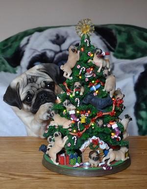 Pug Рождество дерево