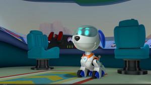 Robo-dog - PAW Patrol