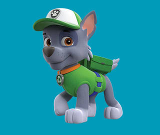 PAW Patrol Wallpaper Titled Rocky The Mixed Breed