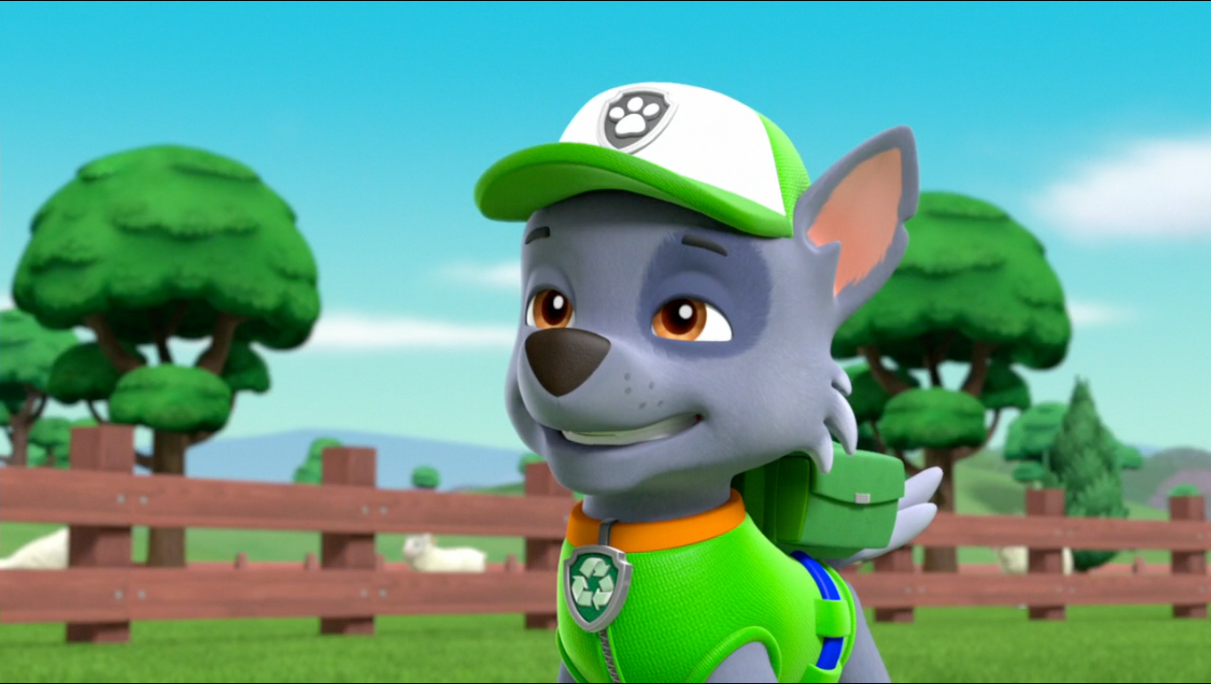 Paw Patrol Images Rocky In Season 3 Hd Wallpaper And Background