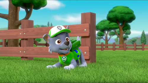 PAW Patrol Wallpaper Called Rocky In Season 3