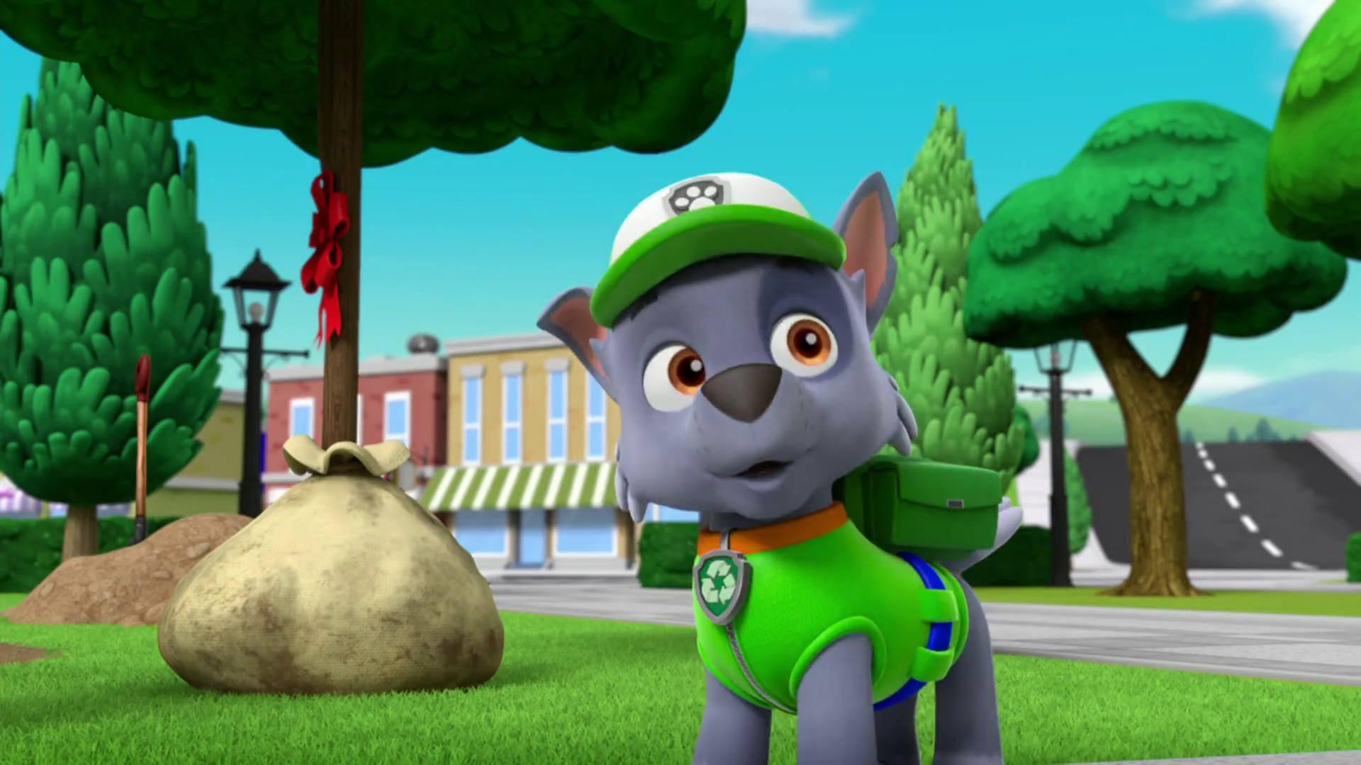 rocky in season 3  paw patrol photo 40152924  fanpop