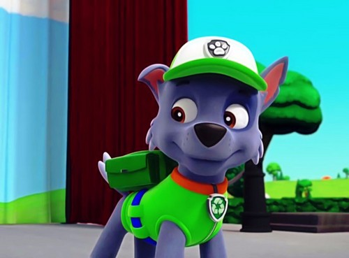 Paw patrol rocky images