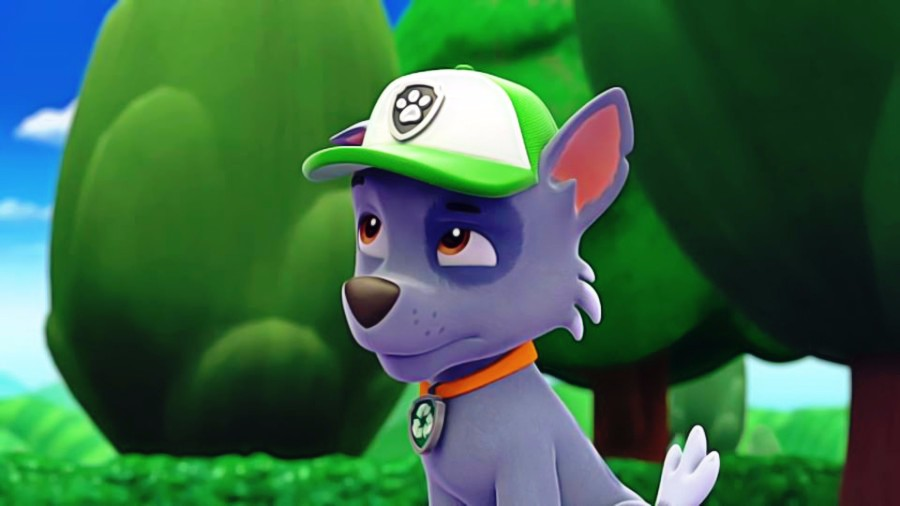 Paw Patrol Images Rocky Hd Wallpaper And Background Photos 40168373