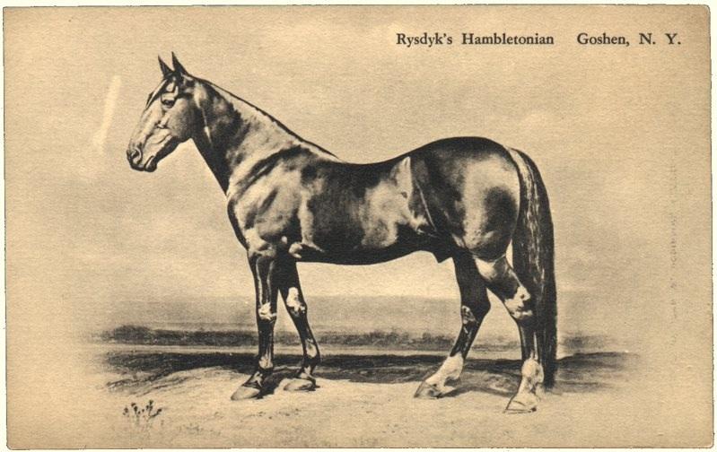Rysdyk's Hambletonian