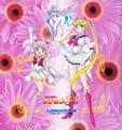 Sailor Moon SS - sailor-moon photo