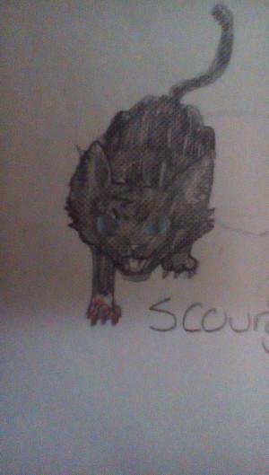 Scourge's fury