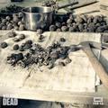 Season 7B ~ Worlds collide. Rise Up. - the-walking-dead photo