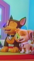 Skye x Chase - PAW Patrol - animated-couples photo