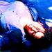 Tara Chambler - the-walking-dead icon