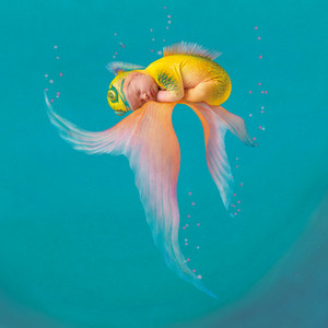 Under the Sea par Anne Geddes
