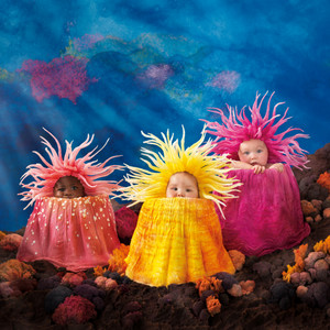 Under the Sea door Anne Geddes