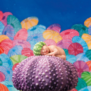Under the Sea por Anne Geddes