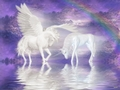 Unicorn and Pegasus  - unicorns photo