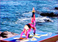 Wai Lana Easy Yoga