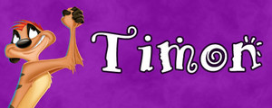 Walt Disney Character Banner - Timon
