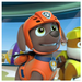 Zuma, The Labrador - paw-patrol icon