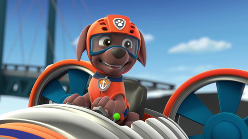 PAW Patrol Wallpaper Entitled Zuma The Labrador