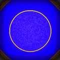 circle 24