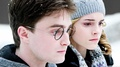 harry potter and hermione wallpaper 1366x768 - harry-potter photo