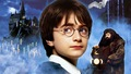 hinh nen harry potter dep nhat  13  - harry-potter photo