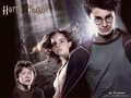 hinh nen harry potter dep nhat  3  - harry-potter photo