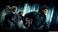 hp7 wallpaper 1366x768 - harry-potter photo