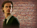 walls - dr-spencer-reid wallpaper