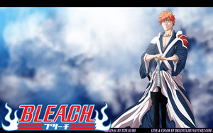 *Ichigo Finally Arrived in Battle*