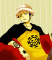 *Trafalgar Law : The Surgeon Of Death* - trafalgar-law photo