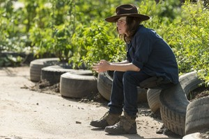 7x09 ~ Rock in the Road ~ Carl