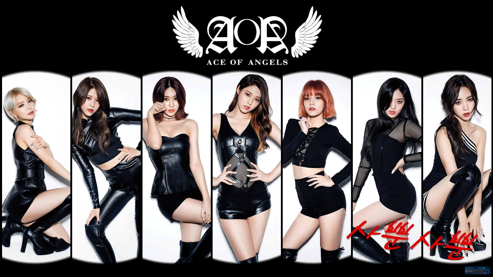 Aoa Wallpapers Aoa Ace Of Angles Wallpaper 40231639