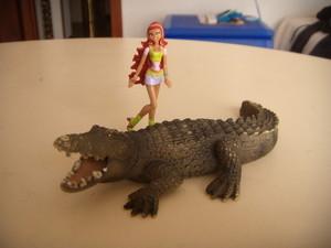 Aisha e il coccodrillo